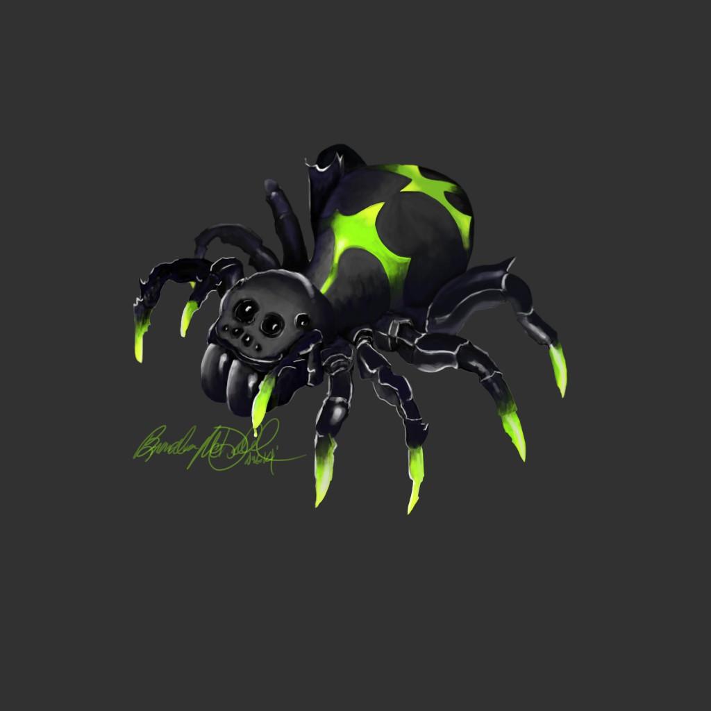 SpiderFinSig copy